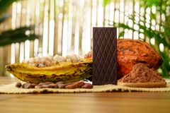 Bitter chocolate bar, raw cocoa fruit, cacao beans, cacao butter on wooden table. Bitter chocolate bar, raw cocoa fruit, cacao beans and cacao butter on wooden royalty free stock images