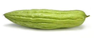 Bitter gourd Stock Images