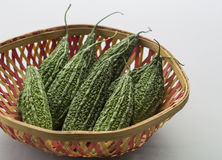 Bitter gourd. In a basket Royalty Free Stock Photos