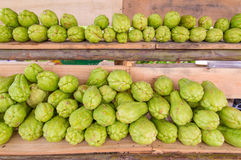 Bitter gourd or Chayote on wood in farms of agriculturist Royalty Free Stock Images