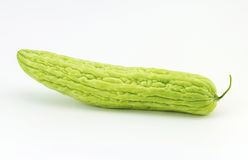 Bitter gourd Royalty Free Stock Image