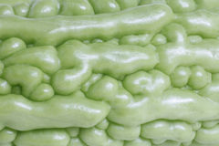 Bitter gourd in marco Royalty Free Stock Photo