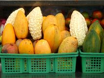 Bitter Gourds, Mangos and Papayas Royalty Free Stock Images