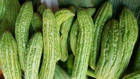 Bitter kalebass- eller Momordicacharantia Arkivfoto