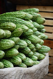 Bitter Melon in market Royalty Free Stock Photos