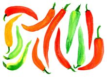 Bitter pepper. Many different bitter peppers, yellow, red green, burgundy on a white background. Watercolor. Background Royalty Free Stock Images