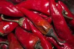 Bitter red pepper in large quantity Stock Photo