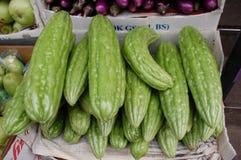 Bittere Meloen royalty-vrije stock foto