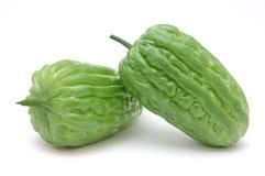 Bittere meloenen royalty-vrije stock afbeeldingen