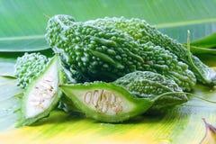Bittere Melone oder bitterer Kürbis Stockfoto