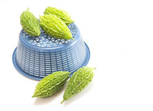 Bittere Melone oder bitterer Kürbis auf weißem Hintergrund Stockfotografie