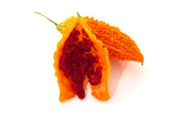 Bittere Melone oder gelber Momordica lokalisiert auf Weiß Lizenzfreie Stockfotos