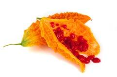 Bittere Melone oder gelber Momordica lokalisiert auf Weiß Lizenzfreies Stockfoto