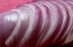 Bittere violette gesneden uien stock fotografie