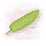 Bitterhet-melon Arkivbilder