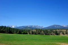 Bitterroot góry blisko Darby, Montana fotografia stock
