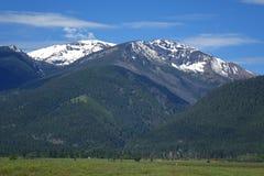 Bitterroot Mountains - Montana Stock Image