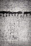 Bitumen wall texture Stock Image