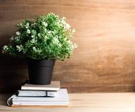 Biurka biuro z notatnika drzewem w garnku na przestrzeń stole i papierem Obraz Stock