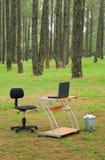 biurka lasowy laptopu biuro Obrazy Royalty Free