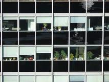 Biurowi okno z roślinami Obraz Royalty Free
