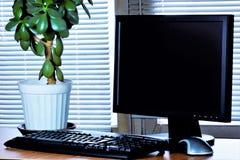 Biurowy biurko - komputerowy monitor, klawiatura, mysz, pieniądze drzewo, nadokienne story Konieczny akcesoria kierownik - klawia zdjęcia royalty free