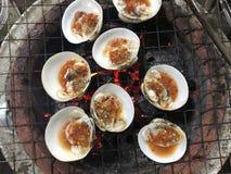 Bivalve, conhecido como o sp de Geloina do larn do koh do pok do hoy Local tailandês fotografia de stock