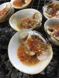 Bivalve, conhecido como o sp de Geloina do larn do koh do pok do hoy Local tailandês imagem de stock