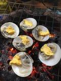 Bivalve, connue sous le nom de PS de Geloina de larn de KOH de pok de hoy Local thaïlandais image stock