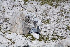 Bivouac sob o pico de Jalovec - alpes julianos imagem de stock royalty free