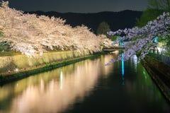 Biwa有佐仓树的湖运河 免版税库存照片