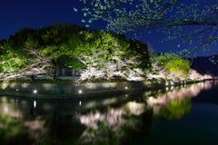 Biwa lake canal with sakura tree Royalty Free Stock Photography