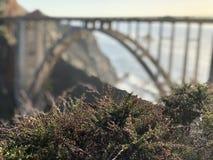 Bixby Bridżowy Duży Sura Kalifornia Zdjęcie Royalty Free