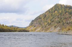 The Biya River, the Republic of Gorny Altai, southern Siberia. royalty free stock images