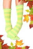 Bizarre. Slim legs with funny socks Stock Photos