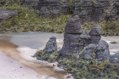 Bizarre ancient rocks of the plateau Roraima tepui - Venezuela,. Bizarre ancient rocks of the plateau Roraima tepui - Venezuela Royalty Free Stock Image