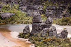 Bizarre ancient rocks of the plateau Roraima tepui - Venezuela, Latin America Royalty Free Stock Image