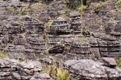 Bizarre ancient rocks of the plateau Roraima tepui - Venezuela, Latin America Stock Image