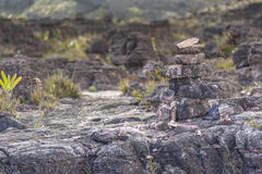 Bizarre ancient rocks of the plateau Roraima tepui - Venezuela,. Latin America Royalty Free Stock Photo