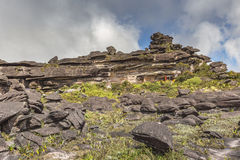 Bizarre ancient rocks of the plateau Roraima tepui - Venezuela,. Latin America Stock Images