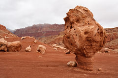 Bizarre Balanced Rock, Marble Canyon, Arizona Stock Photography