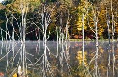 Bizarre bezinningen bij Reservoir Monksville stock afbeeldingen