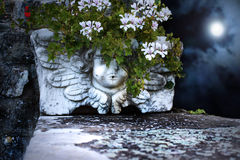 Bizarre Cherub Vase at Night. A bizarre marmoreal Cherub vase with some red and white flowers with rocks wall and night sky in the background Royalty Free Stock Images