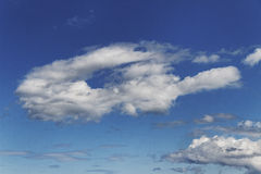 Bizarre cloud. Royalty Free Stock Photos
