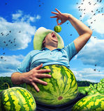 Bizarre farmer. With watermelon instead of the abdomen on field in summer stock photo