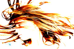 Bizarre hair 2. Abstract girl Stock Image