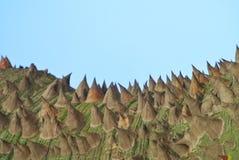 Bizarre looking terrain with sky. Bizarre looking terrain background texture Royalty Free Stock Photos