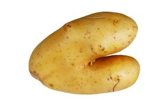 Bizarre Potato Stock Image