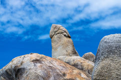 Bizarre Rots (de Rots van Hin Ta) op blauwe hemel, Samui-Eiland, tha van Surat Royalty-vrije Stock Afbeeldingen
