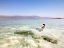 Bizarre salt formations at the dead sea in Israel Royalty Free Stock Images